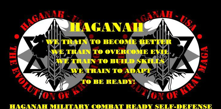 Resultado de imagen de Haganah